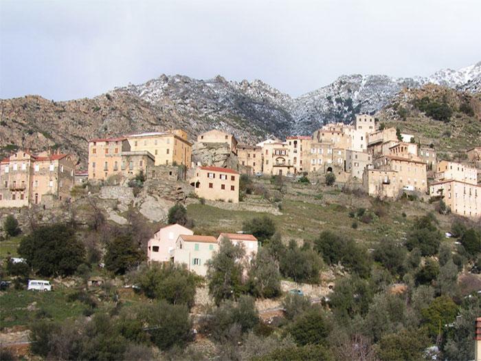 village lama.jpg